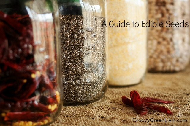 Groovy Green Livin A Guide to Edible seeds