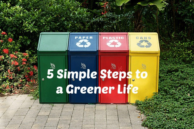 5 Simple Steps to a Greener Life – VIDEO