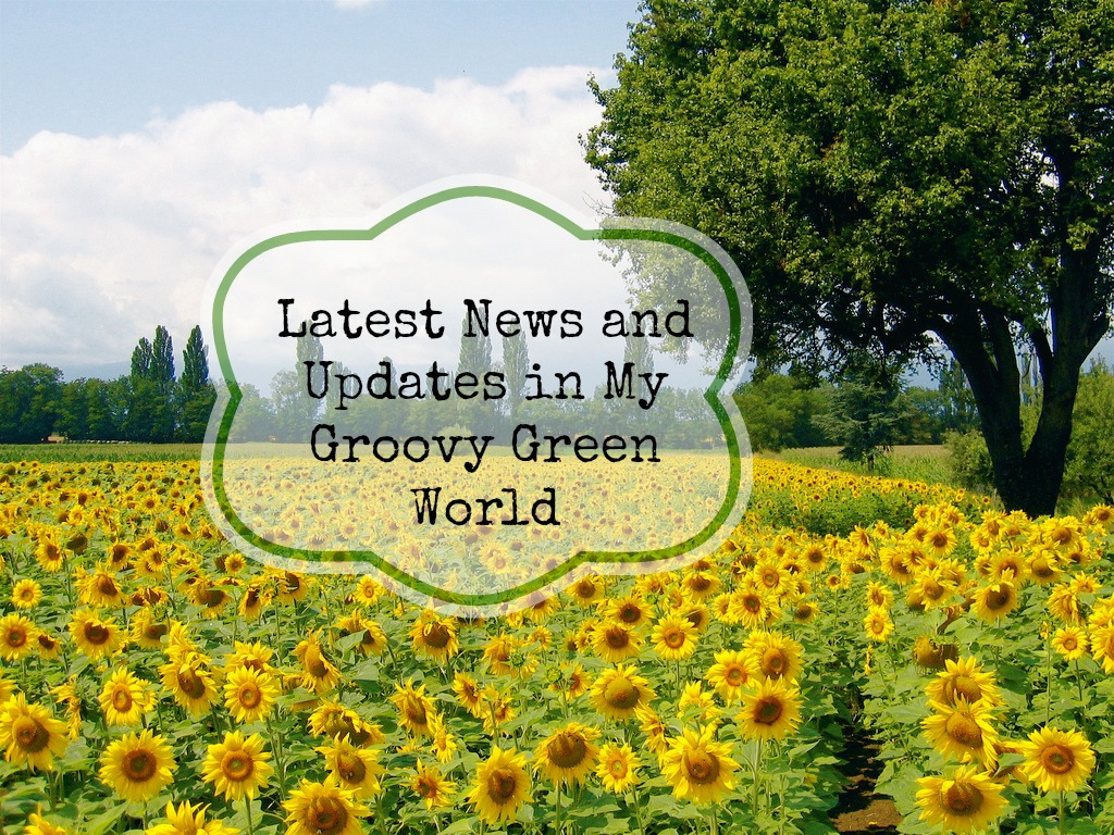 Latest News and Updates in My Groovy Green World
